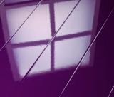 Фиолетовый 772304 ELESGO
